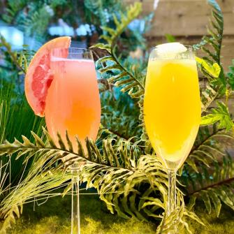 Cocktails at Platform 41