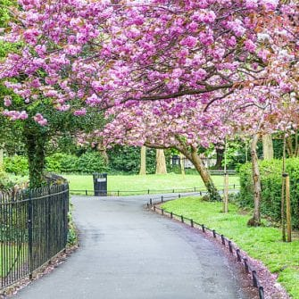 St Stephens Green Park